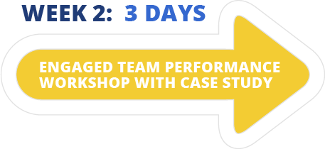 Week 2, 3 Days | Engaged Team Performance workshop with Case Study